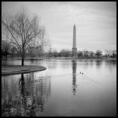 Washington Monument, early morning.