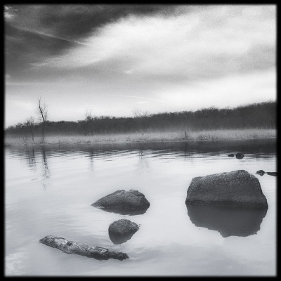 Dyke Marsh 1
