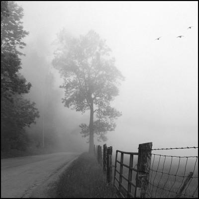 Mountain Top Road
